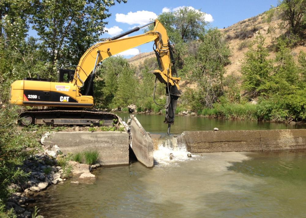 Removal of Pioneer Irrigation District Dam, Wenatchee River, Washington