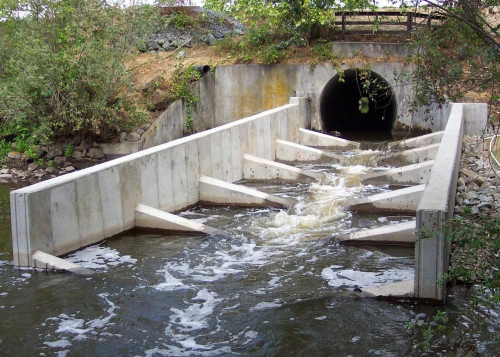 Fish Passage Improvement Project