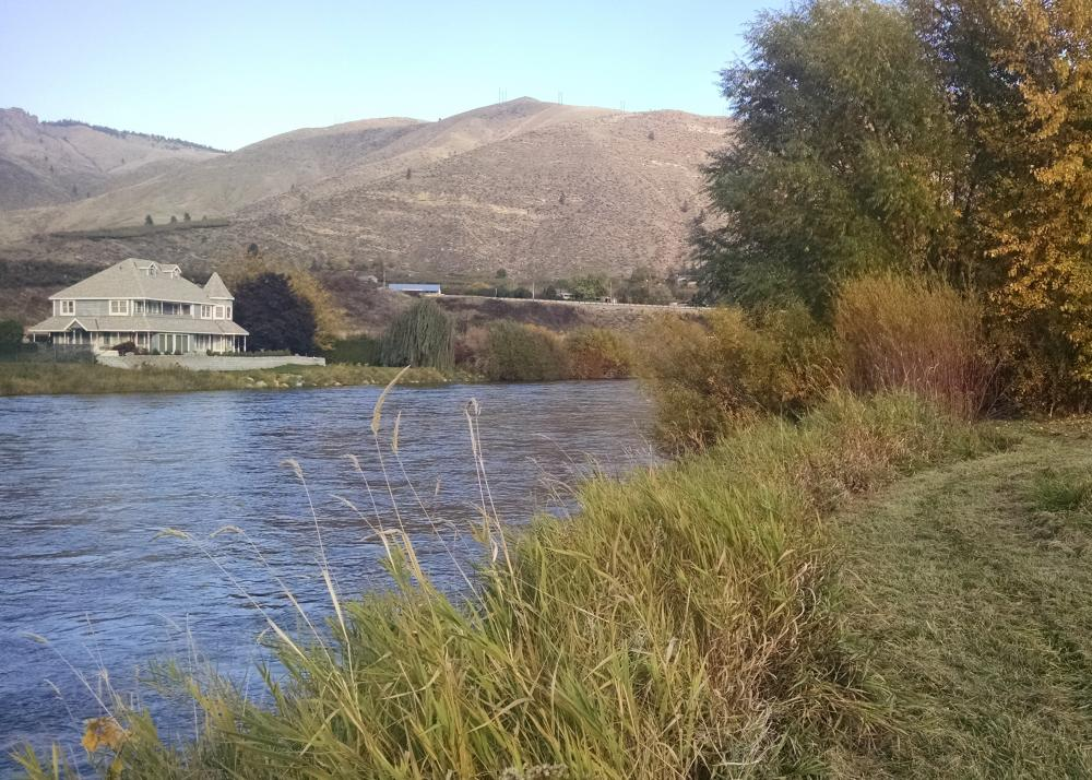 Riparian habitat survey, Wenatchee River, Chelan County, Washington