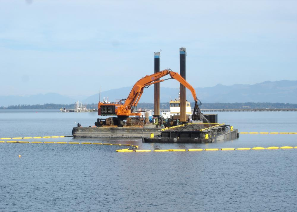 Habitat remediation at the former Scott Paper Mill Site, Port of Anacortes
