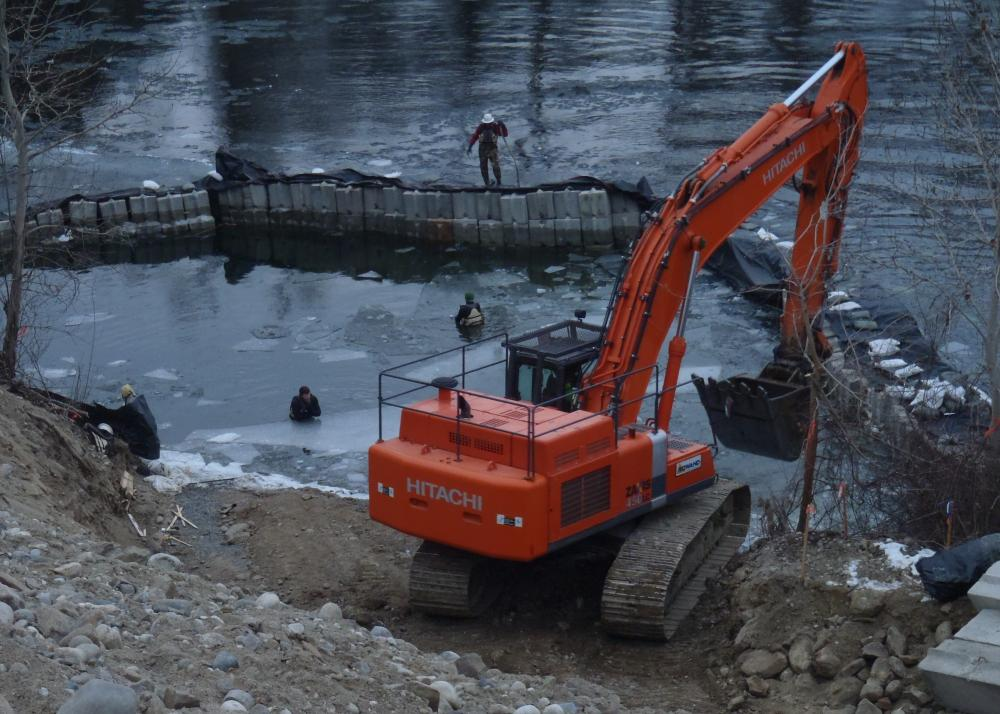 Fish exclusion and removal during Improvements to the Gunn Irrigation Project, Wenatche ...
